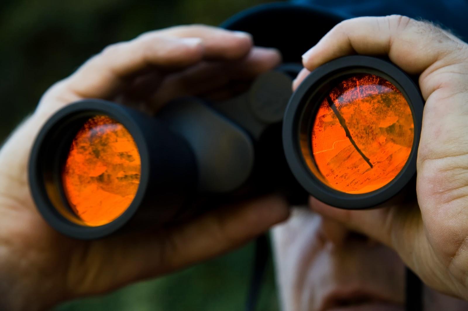 Florida Association of Private Investigators - Florida P I  Licensing